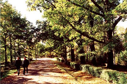 malnavas parks 1